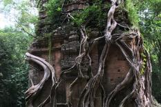 Two Days From Phnom Penh To Siem Reap Road Tours - sambor-prek-kuk-group.JPG