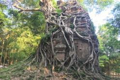 Phnom Penh to Siem Reap Road Sightseeing - temple-sambor-prei-kuk.jpg